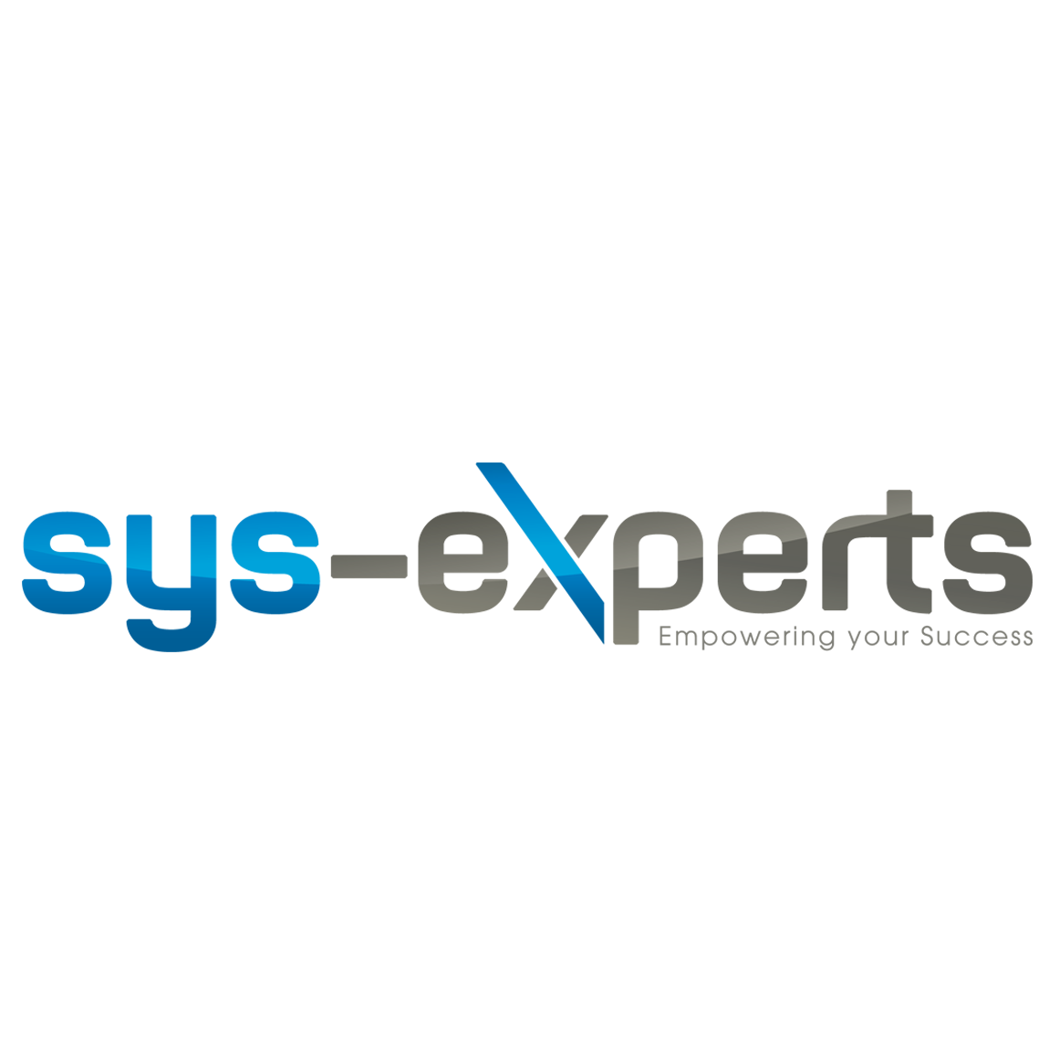 Sys-experts